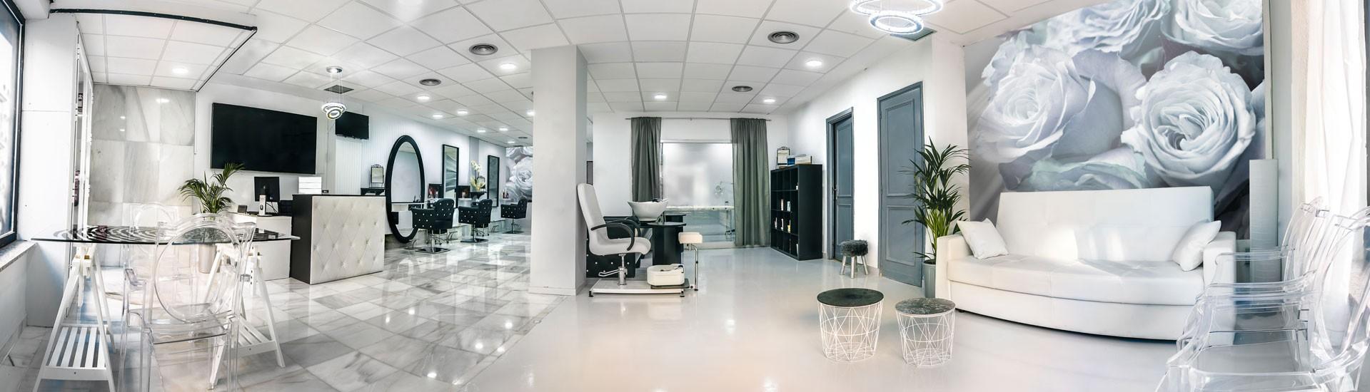 Great Mobilier Salon De Coiffure Luxe